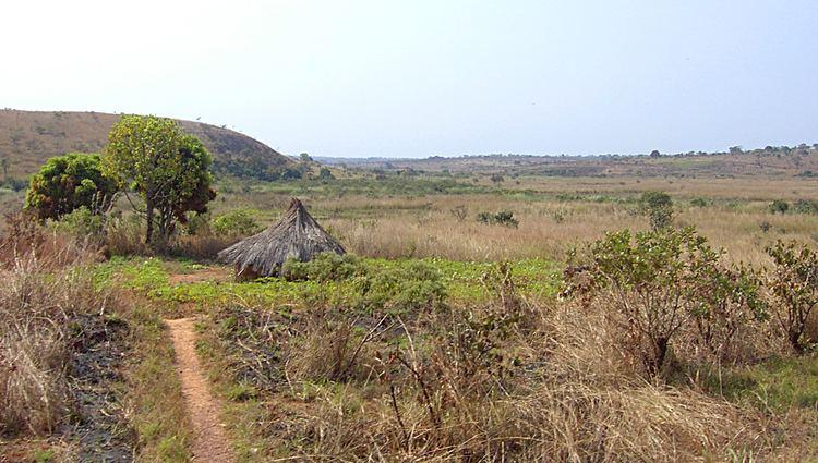 Adamawa Region in the past, History of Adamawa Region