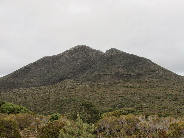 Adamsons Peak Adamsons Peak Hiking South East Tasmania