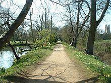 Addison's Walk httpsuploadwikimediaorgwikipediacommonsthu