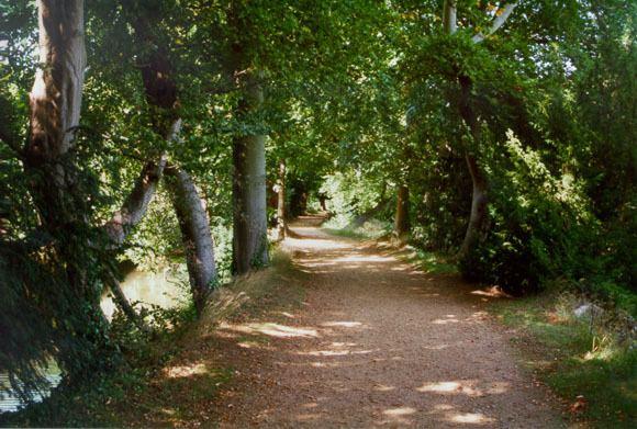 Addison's Walk Tolkien39s Oxford 10