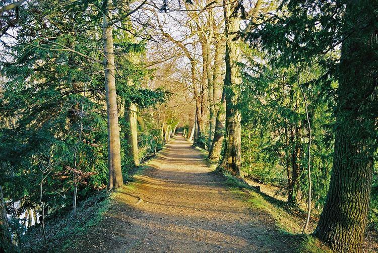 Addison's Walk FileAddison39s Walk Winter 2002 2jpg Wikimedia Commons