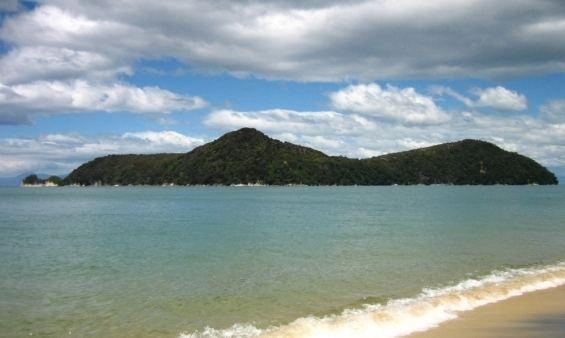 Adele Island (New Zealand) wwwdocgovtnzpagefiles147457adeleisland565jpg