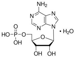 Adenosine monophosphate Adenosine 5monophosphate monohydrate from yeast 97 SigmaAldrich