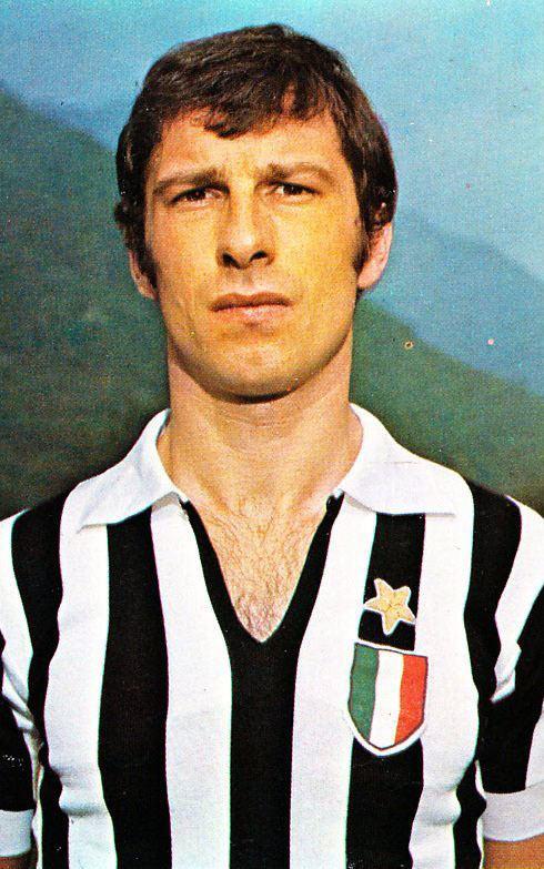 Adriano Novellini httpsuploadwikimediaorgwikipediait88eAdr