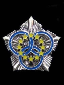 AE-COPSD Sports badge
