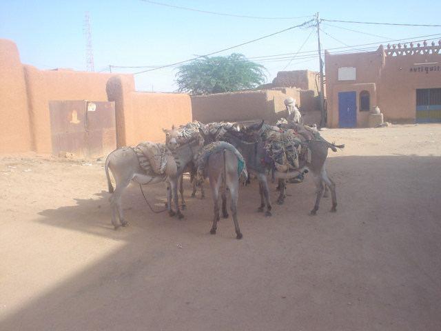 Agadez Culture of Agadez