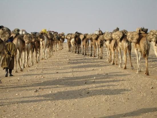Agadez Region Agadez Photos Featured Images of Agadez Agadez Region TripAdvisor