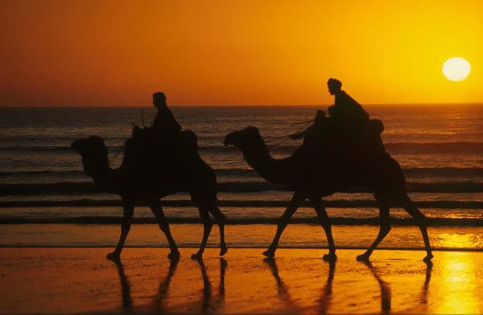 Agadir Culture of Agadir