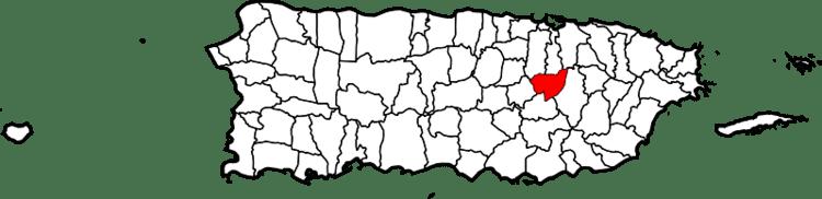Aguas Buenas, Puerto Rico in the past, History of Aguas Buenas, Puerto Rico