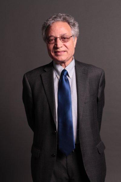 Ahmad Karimi-Hakkak Karimi Hakkak World Literature Worldwise Insights