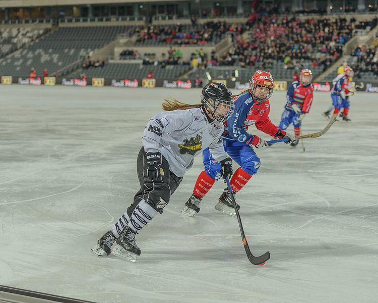 AIK Bandy