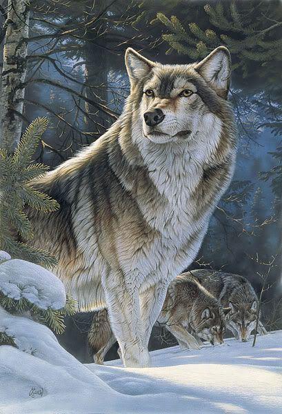 Al Agnew 90 best Artist Al Agnew images on Pinterest Bass Wildlife art