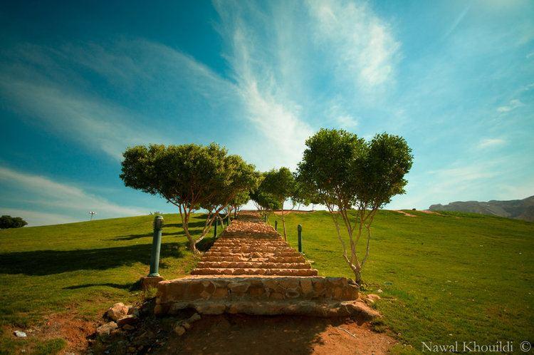 Al Ain Beautiful Landscapes of Al Ain