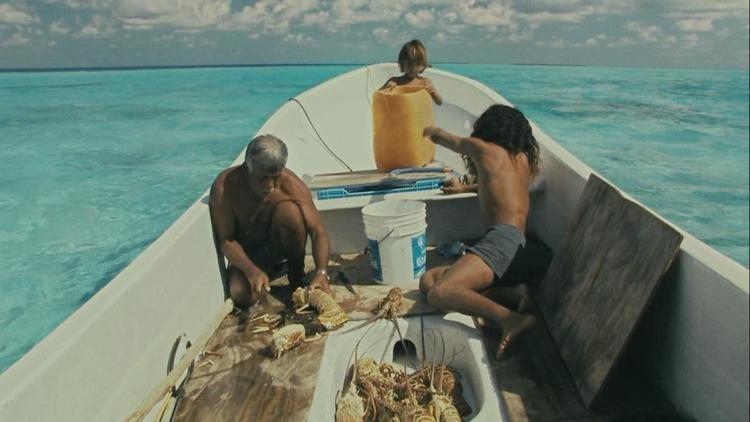 Alamar (film) Buck Theorems Hideout Alamar To The Sea