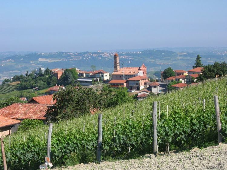 Alba, Piedmont in the past, History of Alba, Piedmont
