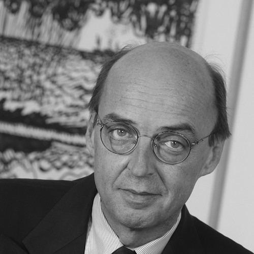 Albert Jan van den Berg Professor Albert Jan van den Berg