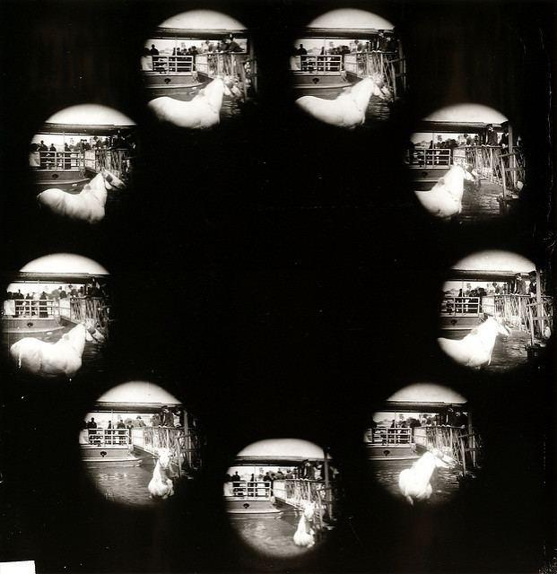 Albert Londe Entre photographie instantane et cinma Albert Londe L