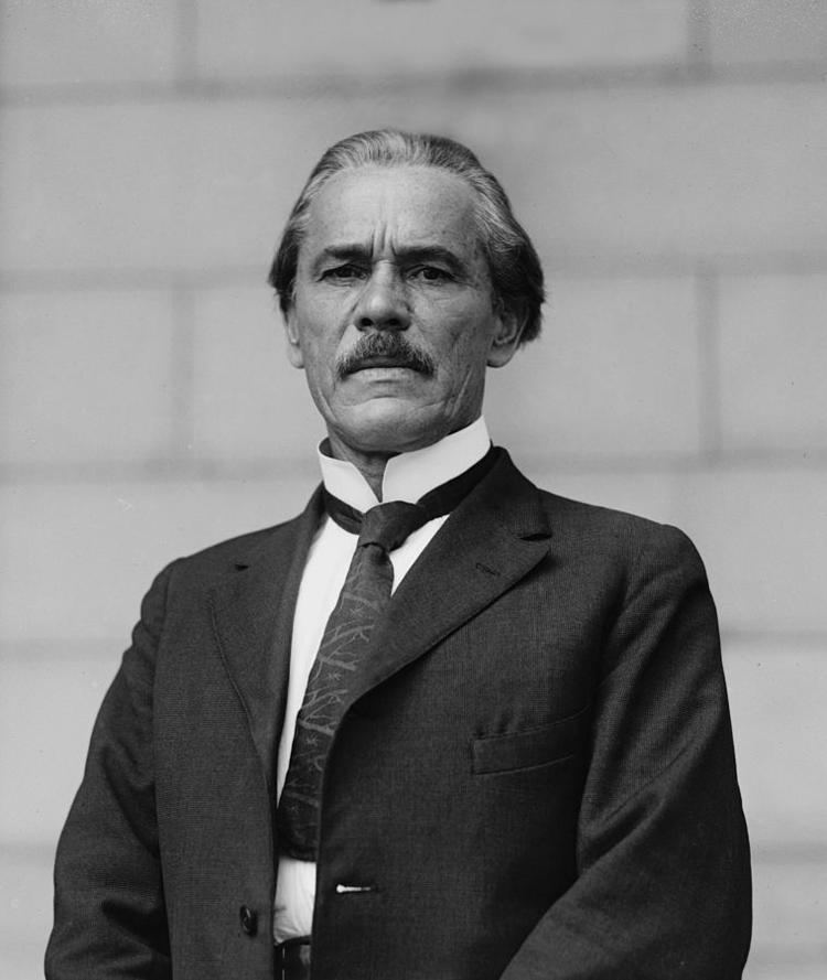 Ales Hrdlicka Ale Hrdlicka 18691943 Czechamerican by Everett