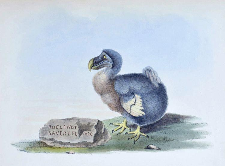 Alexander Gordon Melville