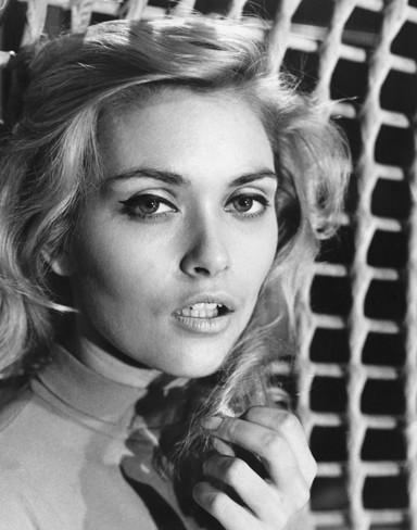 Alexandra Bastedo Alexandra Bastedo Photo at AllPosterscom