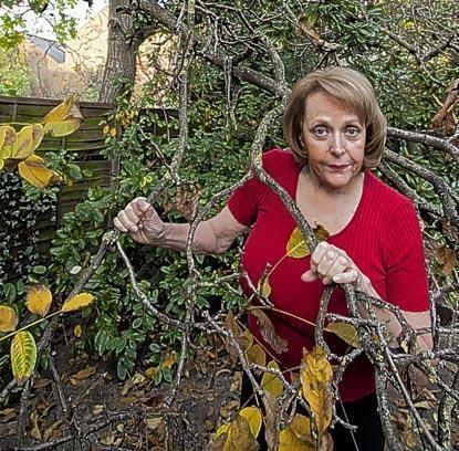 Alexandra Dane Topless Carry On over a walnut tree News London