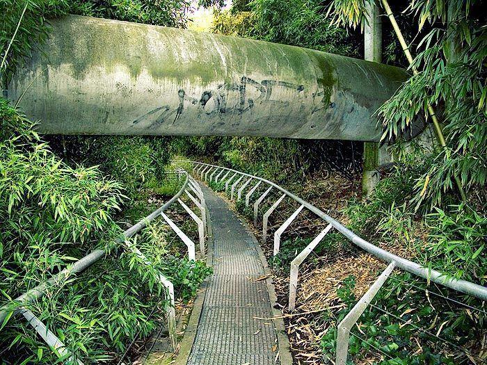 Alexandre Chemetoff The Bamboo Garden Parc de la Villette Paris Designed by