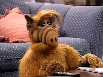 ALF (TV series) TV Series Alf