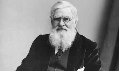 Alfred Russel Wallace Darwin did not cheat Wallace out of his rightful place in