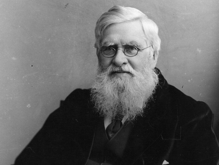 Alfred Russel Wallace Darwin Day 2015 Alfred Russel Wallace the forgotten