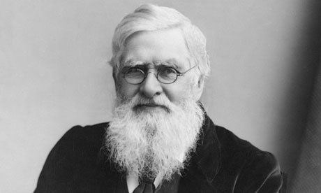 Alfred Russel Wallace Alfred Russel Wallace the forgotten man of evolution