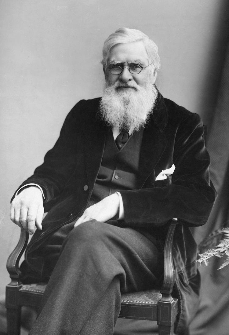 Alfred Russel Wallace httpsuploadwikimediaorgwikipediacommonsdd
