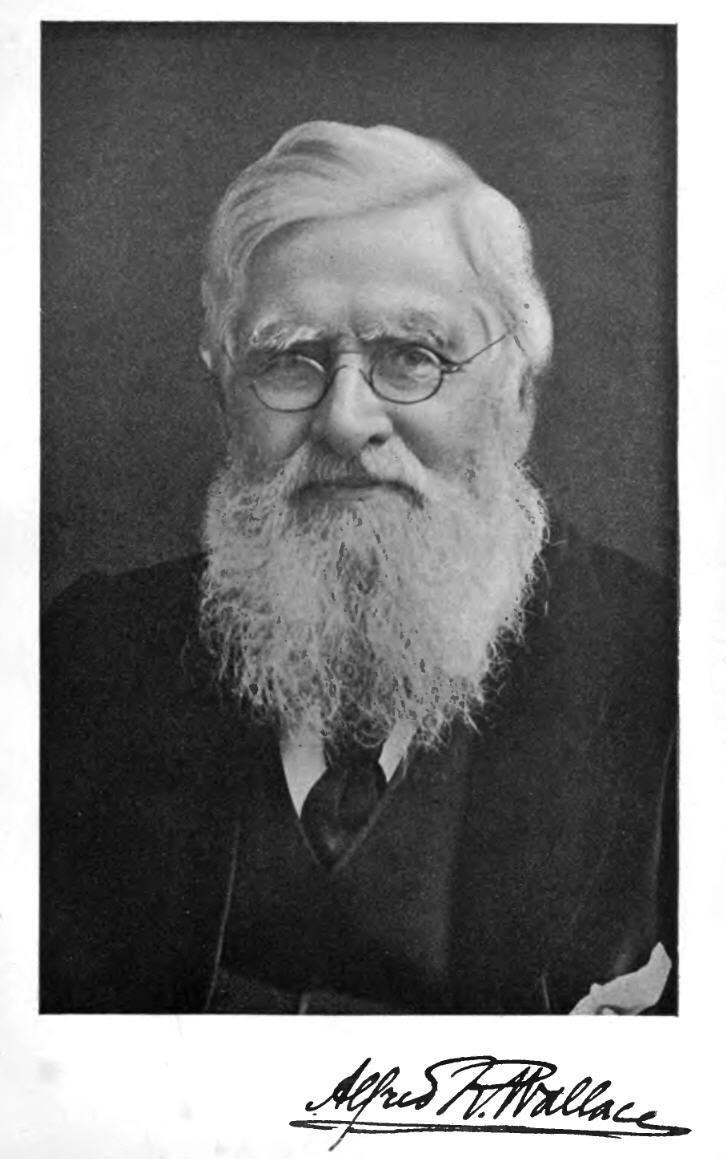 Alfred Russel Wallace Alfred Russel Wallace Professor Olsen Large