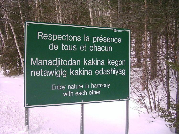 Algonquin language