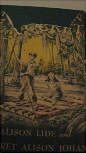 Alice Alison Lide WOODEN LOCKET Amazoncouk ALICE ALISON LIDE 9780670781331 Books