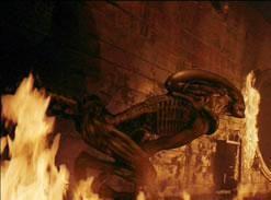 Alien (creature in Alien franchise) Alien creature in Alien franchise Wikiwand