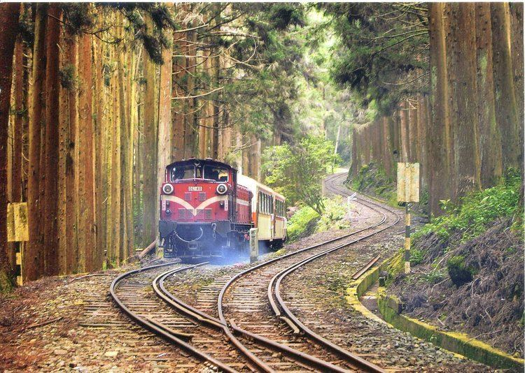 Alishan Forest Railway Alishan Forest Railway Remembering Letters and Postcards