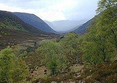 Alladale Wilderness Reserve httpsuploadwikimediaorgwikipediacommonsthu
