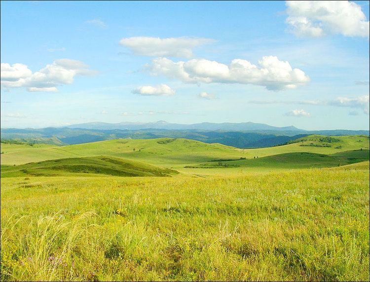 Altai Krai in the past, History of Altai Krai
