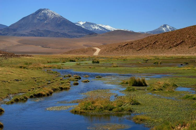 Altiplano Wallpapers Altiplano Nature Image 293837 Download