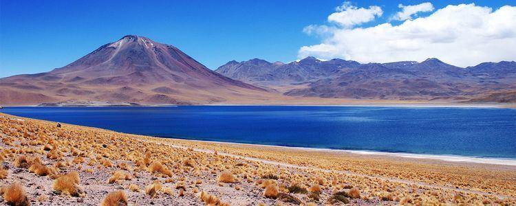 Altiplano The Altiplano Bolivia