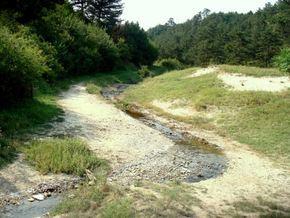 Aluniș River (Arieș) httpsuploadwikimediaorgwikipediacommonsff