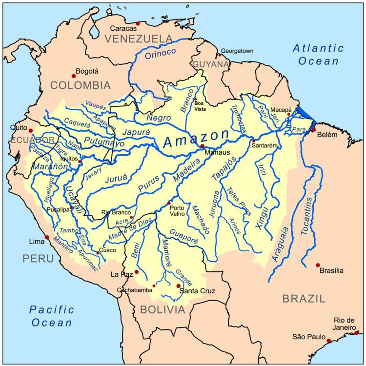 Amazon basin Amazon basin Wikipedia