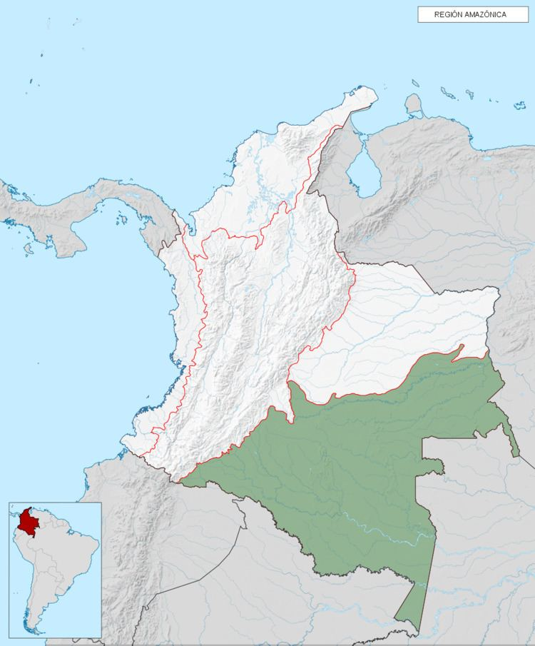 Amazon natural region