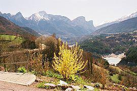 Ambel, Isère httpsuploadwikimediaorgwikipediacommonsthu