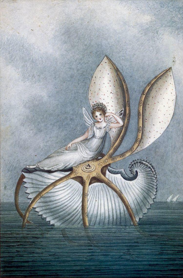 Amelia Jane Murray 1000 images about amelia jane murray on Pinterest