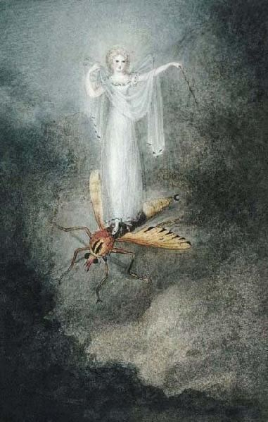 Amelia Jane Murray The Moth Fairy by AMELIA JANE MURRAY Peter Nahum At The Leicester