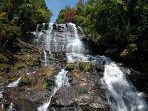 Amicalola Falls State Park Amicalola Falls State Park