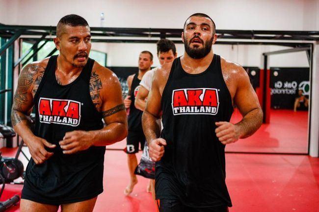 Amir Aliakbari World champion wrestler Amir Aliakbari to make MMA debut