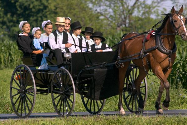 Amish The Amish Keep These Details Hidden For A Good Reason Activly