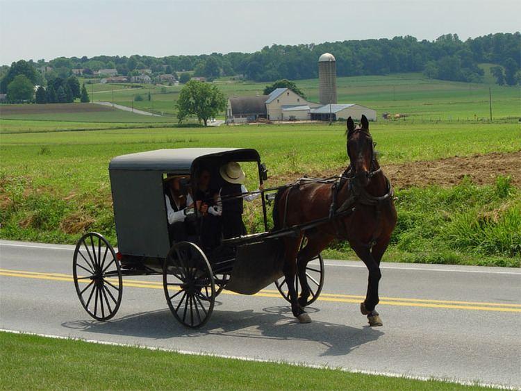 Amish httpsuploadwikimediaorgwikipediacommons00